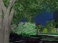 Google Earth 6.0 intègre Street View et les forêts en 3D