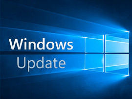Windows 10 : le dernier correctif KB4515384 crée un problème avec les cartes réseau