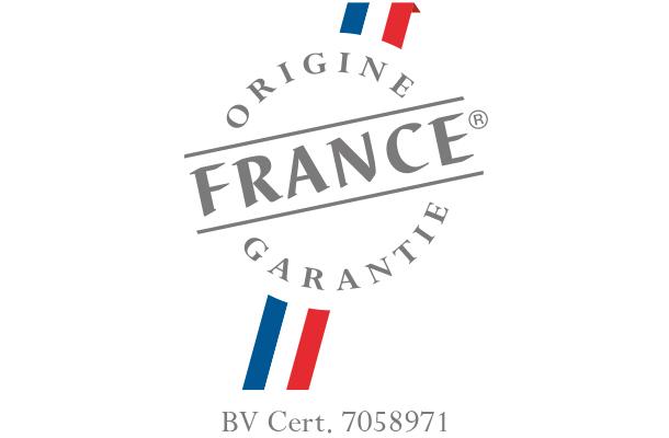 Que reste-t-il de nos 4-roues ? (en France) Ofg-