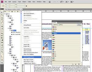 Adobe InDesign (Windows) CS4
