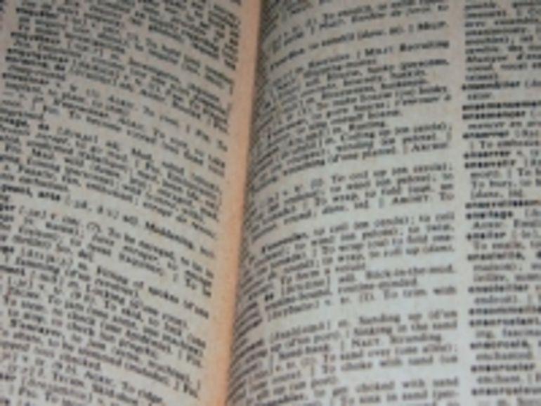 Le filoutage et le disque numérique polyvalent  bientôt dans le dictionnaire ?