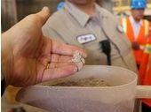 High-tech et environnement : naissance de l'iPhone dans les exploitations de minéraux rares