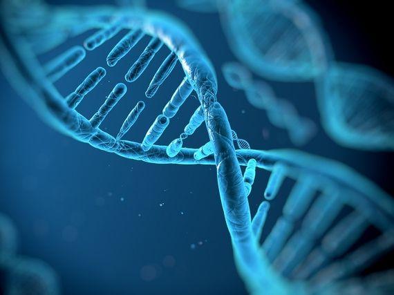 Microsoft veut stocker des données sur des brins  d'ADN