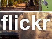 Yahoo relance Flickr Pro