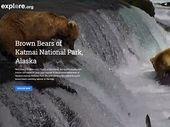 Google Earth intègre désormais des vidéos en direct