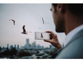 Bon plan : Sony Xperia XZ1 Compact à 299€