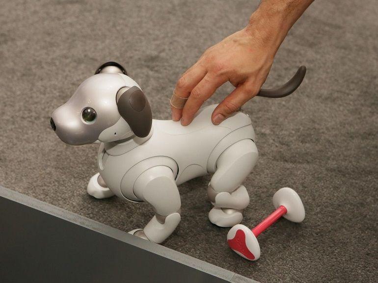 CES 2018 : Sony dévoile une nouvelle version de son chien robot AIBO