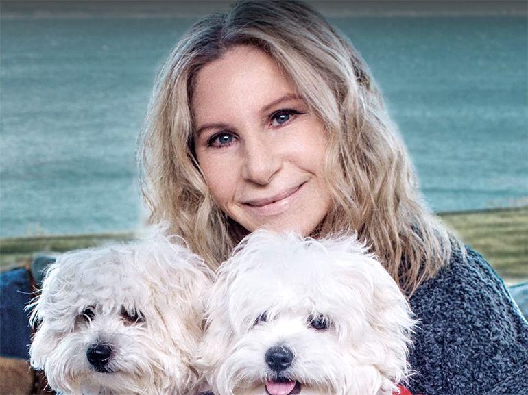 Barbara Streisand a fait cloner son chien (deux fois), et elle n'est pas la seule