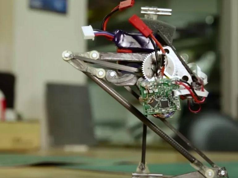 Salto, le robot qui s'inspire de la grenouille pour se déplacer