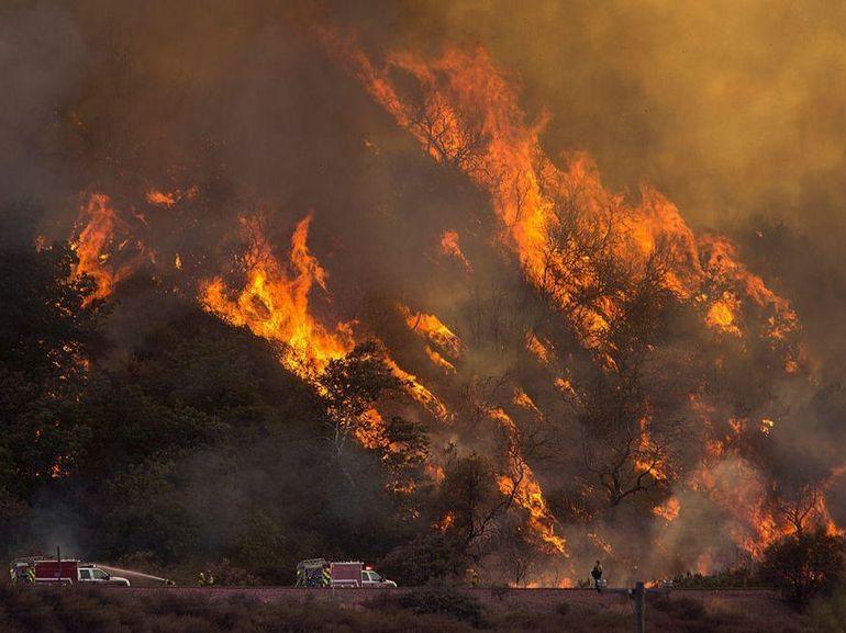 Incendies en Californie : des tests ADN utilisés en zone de guerre pour identifier les victimes