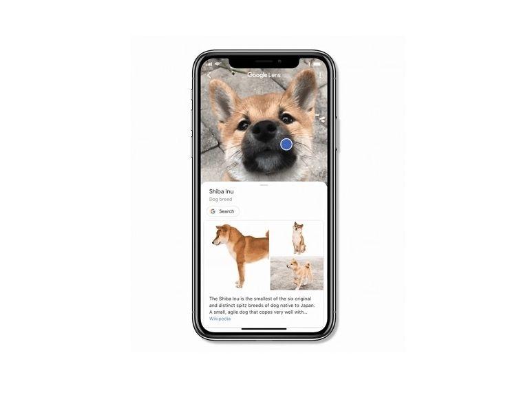 Google Lens arrive sur iOS... aux Etats-Unis