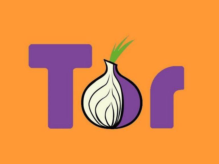 Dark web : le navigateur Tor est disponible sur Android