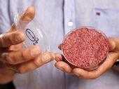 Viande de synthèse et steaks végétaux : une