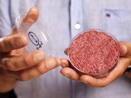 """Viande de synthèse et steaks végétaux : une """"clean meat"""" pas si propre ?"""