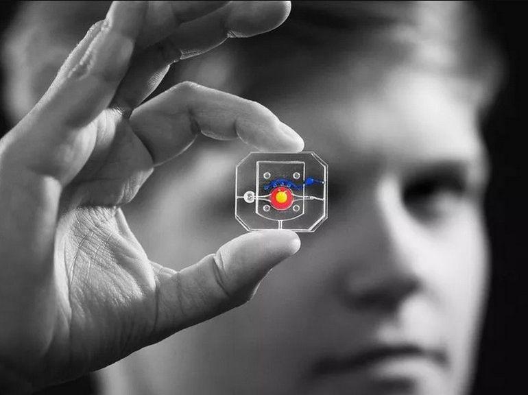 Des chercheurs ont créé un œil artificiel sur une puce de la taille d'une pièce de monnaie