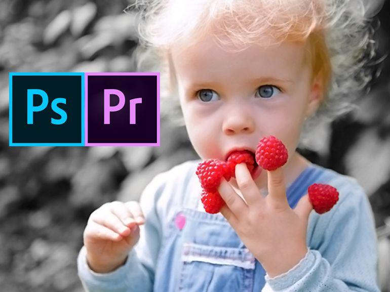 Adobe lance Photoshop et Premiere Elements 2020, toujours plus dopés à l'IA