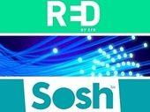 Bon plan forfait internet fibre : qui choisir entre Sosh et RED cette semaine ?