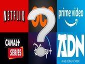 Netflix, Prime Video, Disney+, OCS, ADN : dis moi qui tu es, je te dirai quelle plateforme de SVoD il te faut