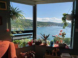 Window Swap : comment s'évader et partager sa fenêtre avec le monde entier