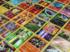 Le business des cartes Pokémon : nostalgie, passion, fric et arnaques
