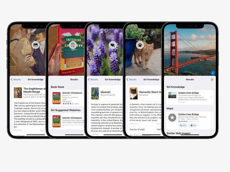 iOS 15 : Apple Live Text peut lire le texte de vos photos