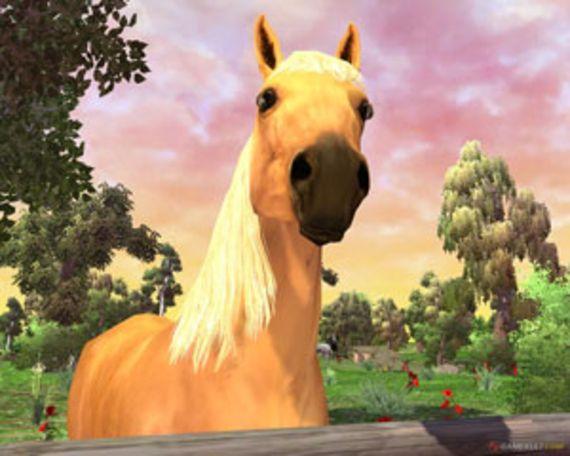 Horse Life : Amis pour la vie