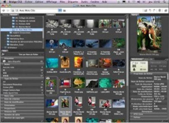 Adobe Photoshop Elements (Mac OS X - Version 6)