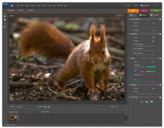 Adobe Photoshop Elements (Windows - Version 7)