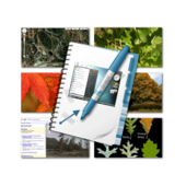 SnagIt (Mac OS X)