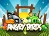Avec Angry Birds, Facebook veut rester le leader du « social gaming »