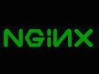 Serveurs web : les géants aiment de plus en plus NGINX