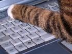 AZERTY : La France veut un clavier souverain...