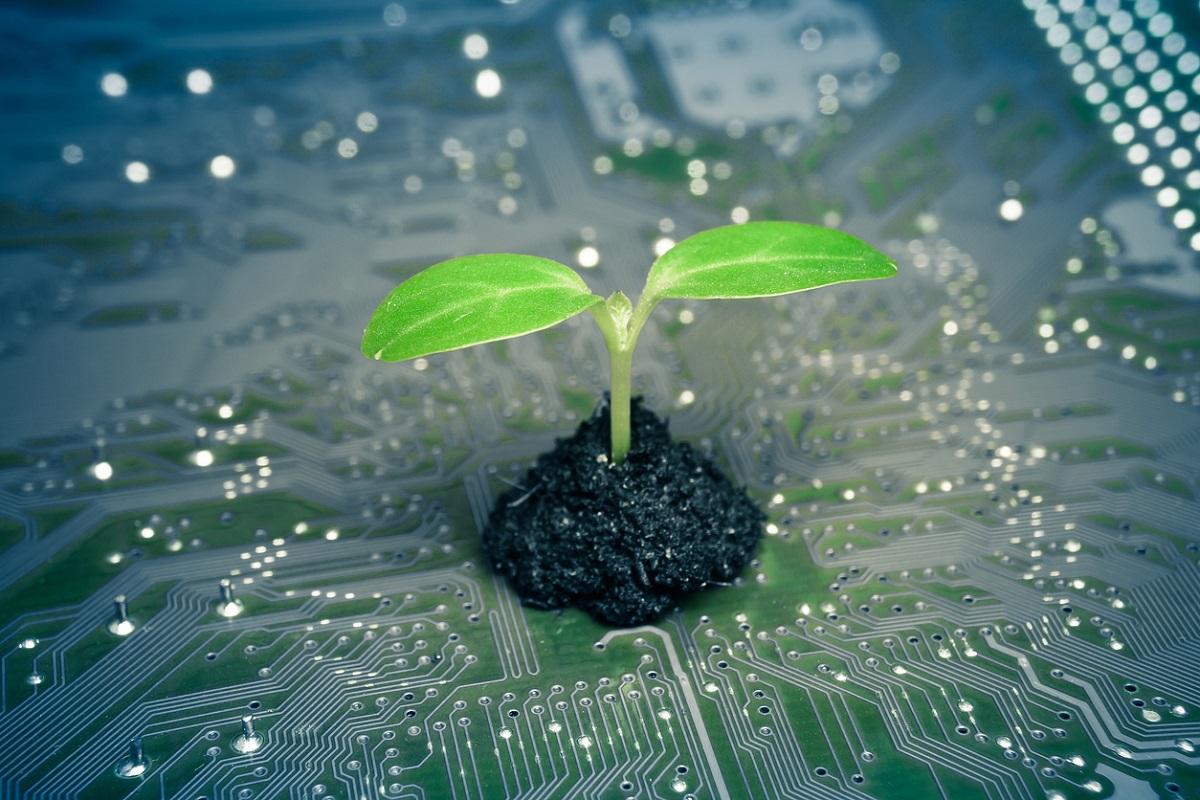 Ecologie: la Royal Society britannique appelle les géants du numérique à faire plus