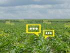 Num-Alim, un projet open data autour des données alimentaires