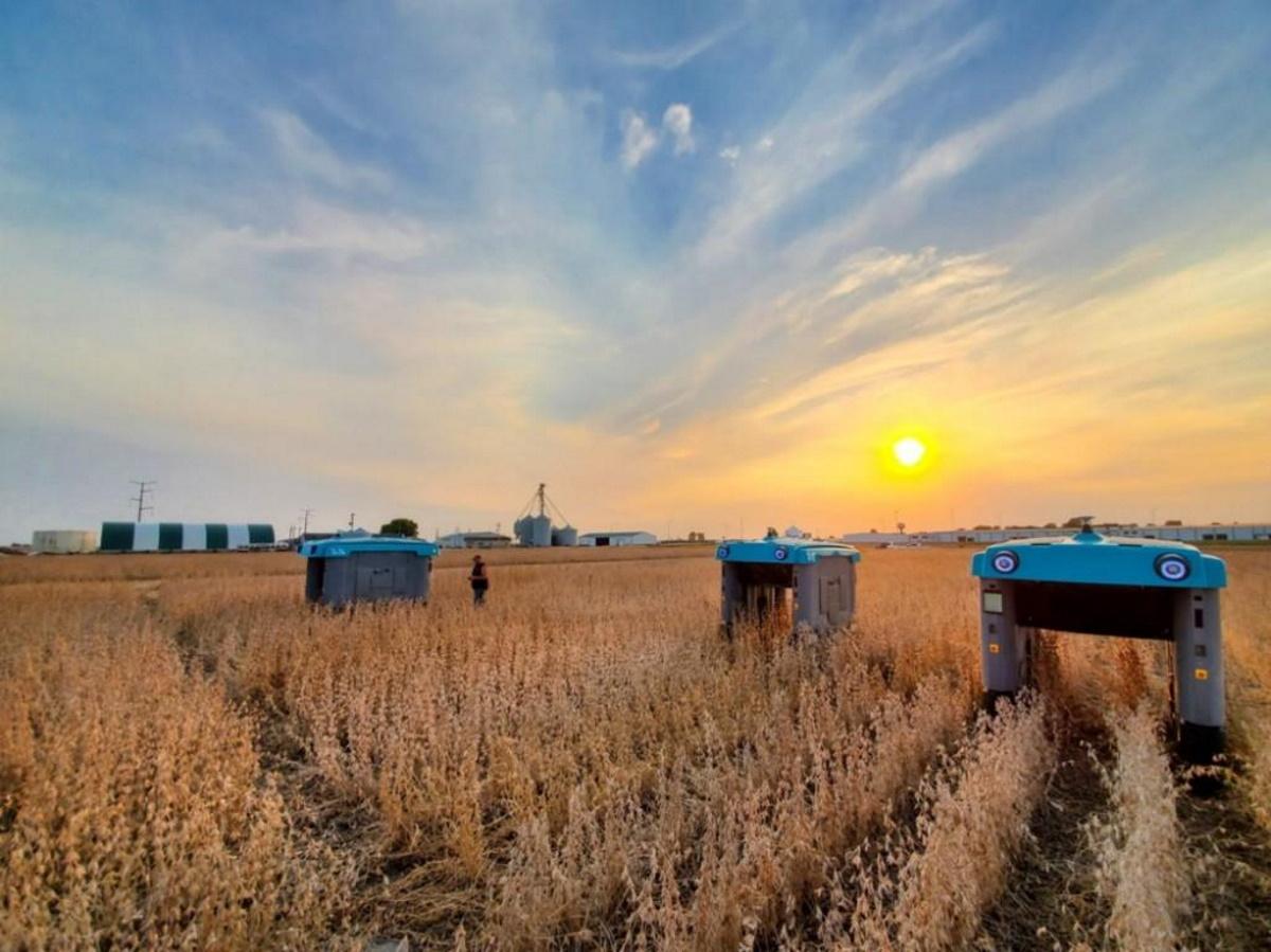 Alphabet lance un robot qui surveille les récoltes et se déplace dans les champs