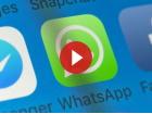 Vidéo: WhatsApp, pourquoi rien ne sera plus comme avant après le 15mai