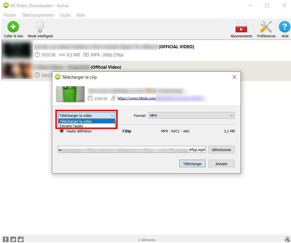 Télécharger au format MP4 des vidéos de 4K Video Downloader