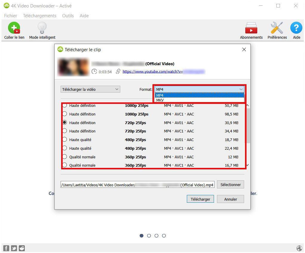 Les formats et résolutions de 4K Video Downloader
