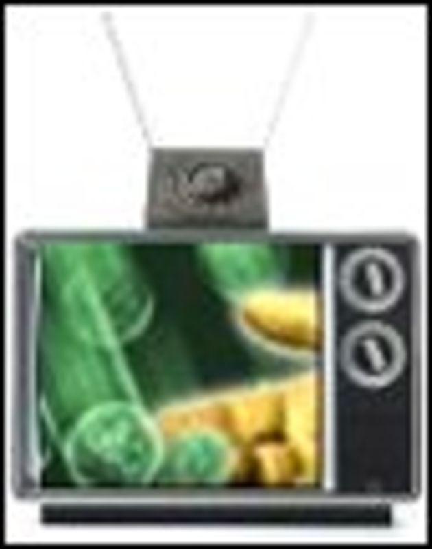 Redevance TV: la Cnil opposée au croisement des fichiers pour coincer les fraudeurs
