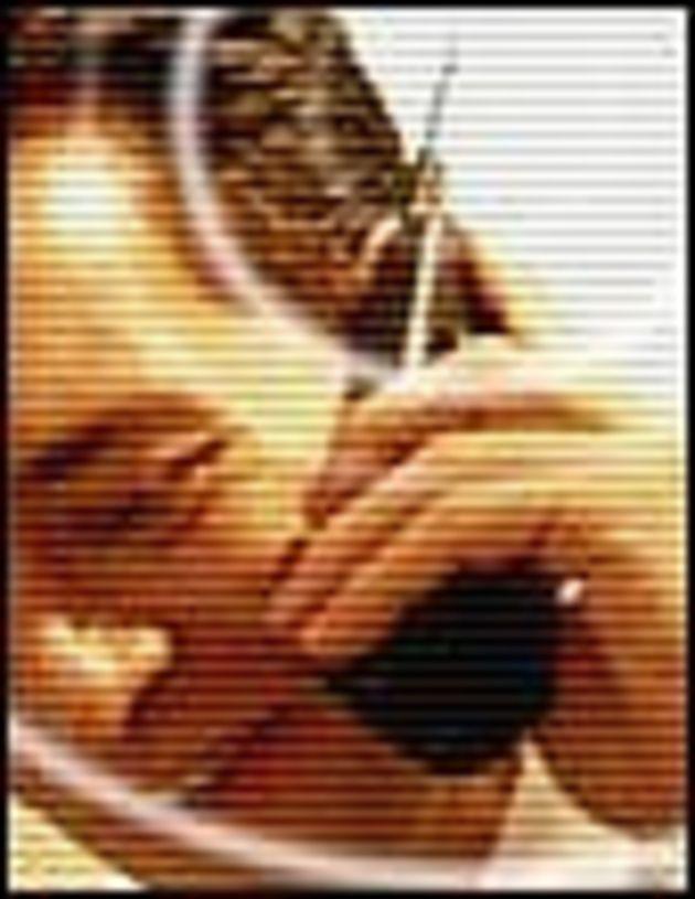 Santé et téléphonie mobile: plus de personnes sensibles aux ondes UMTS