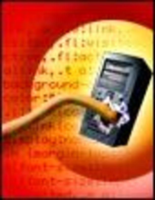 Une variante de Bagle envoie les adresses des PC infectés à plus de 140 sites