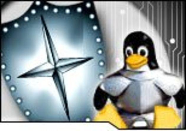 La plate-forme LAMP s'immisce entre Java et .NET