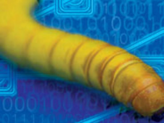 Downadup : neuf millions de PC déjà infectés par le ver