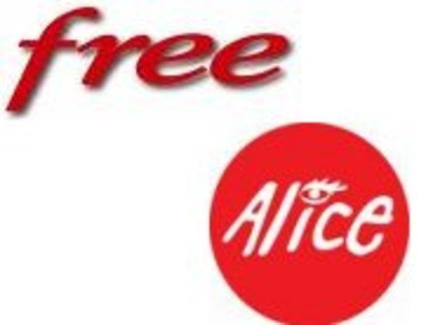 Free casse les prix d'Alice avec une offre triple play à moins de 20 euros par mois