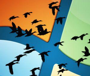 Migration Windows Server 2003 : simple formalité ou parcours du combattant ?