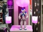 Aldebaran Robotics : Softbank monte à 95% du capital après le départ du P-dg