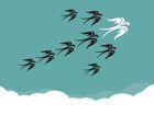 Migrer ou non le décisionnel sur le Cloud : quelles sont les vraies bonnes raisons ?