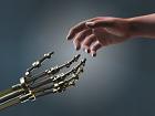 Le machine learning ouvre de nouveaux horizons pour les développeurs