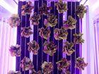 Quand la modélisation 3D se pique d'agriculture urbaine