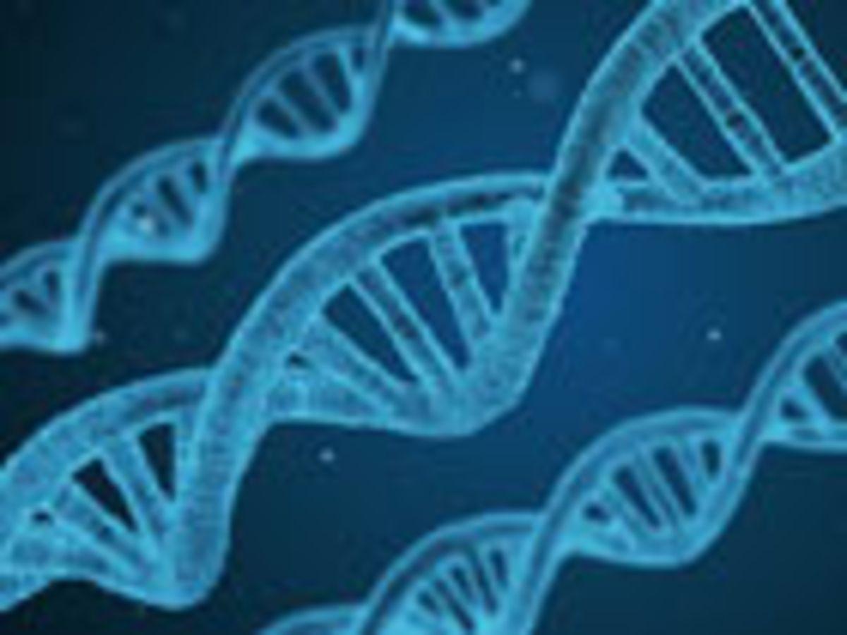 Une cyberattaque peut donner naissance à de nouveaux virus et toxines